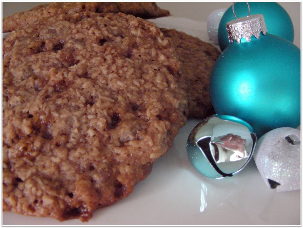 Chocolate Coconut Cookie Recipe in a Jar {Satori Design for Living}