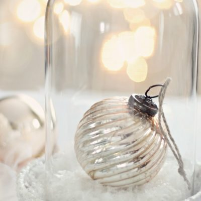 winter cloche via Craftberry Bush