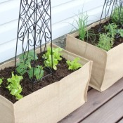 Kitchen Container Potager + Outdoor Extravaganza Link Party