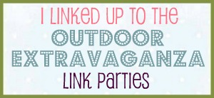 I Joined the Outdoor Extravaganza Link Party!