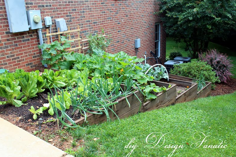 Plants & Flowers Projects - Raised Garden Bed - Tiered garden by Design Fanatic