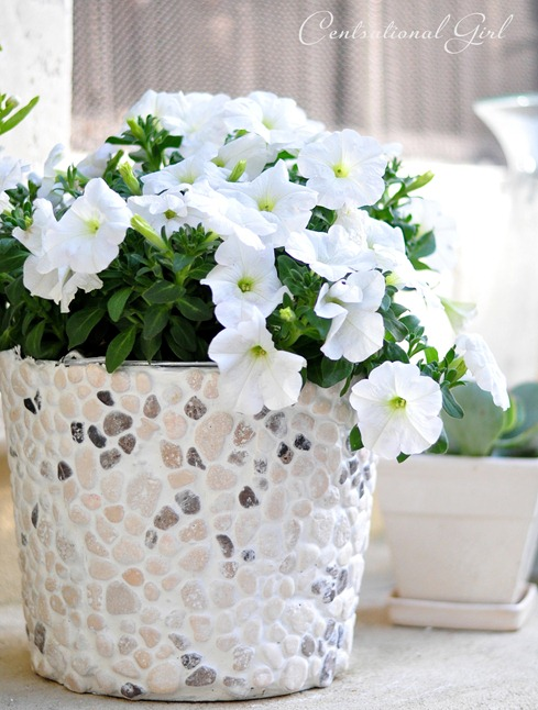 Plants & Flowers Projects - DIY Rock Covered Flower Bucket by Centsational Girl