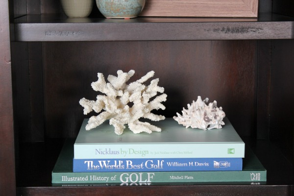 Styling Bookcase With Coral and Shell