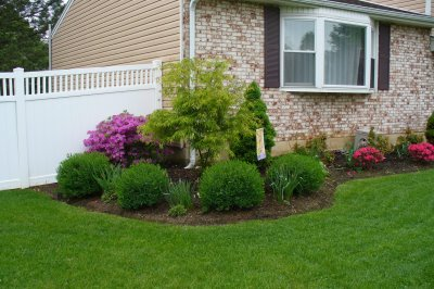 Planting Ideas for Front Yards