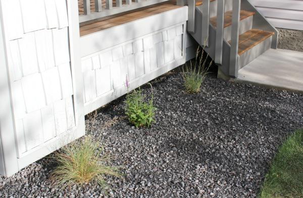 Front Porch Perennials