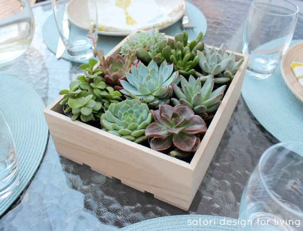 Outdoor Table Setting Ideas - Succulent Centerpiece - Satori Design for Living