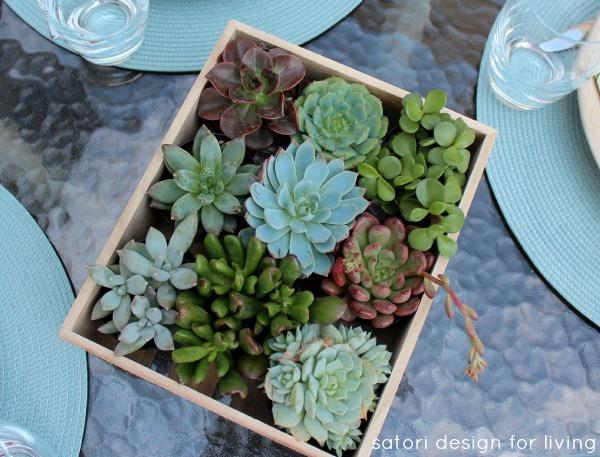 Outdoor Table Setting Ideas - Succulent Centerpiece - Satori Design for Living