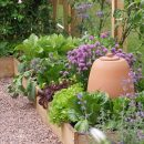 Raised Bed Garden - Raised Bed Garden - Malvern - Crocus Kitchen Garden Blog