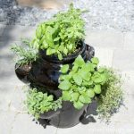 How to Plant a Strawberry Pot Herb Garden - Container Garden - Satori Design for Living