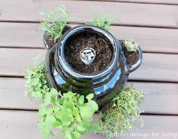 How to Plant a Strawberry Pot Herb Garden - Keeping a Strawberry Pot Moist - Satori Design for Living
