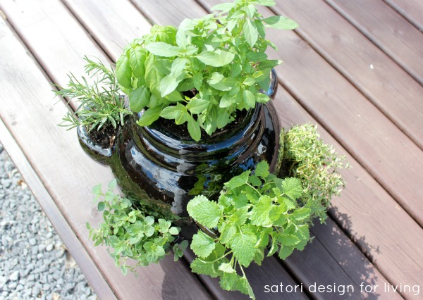 How to Plant a Strawberry Pot Herb Garden - Herb Container Garden Idea - Satori Design for Living