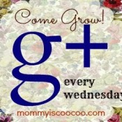 Google+ Link Party- Come grow your circles!