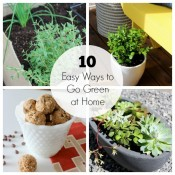 10 Easy Ways to Go Green at Home - Satori Design for Living