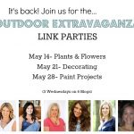 Get Ready for the Outdoor Extravaganza Link Parties!