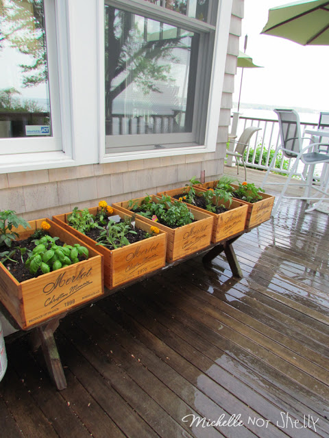 DIY Wine Crate Herb Garden - Miss Stitch a Wish