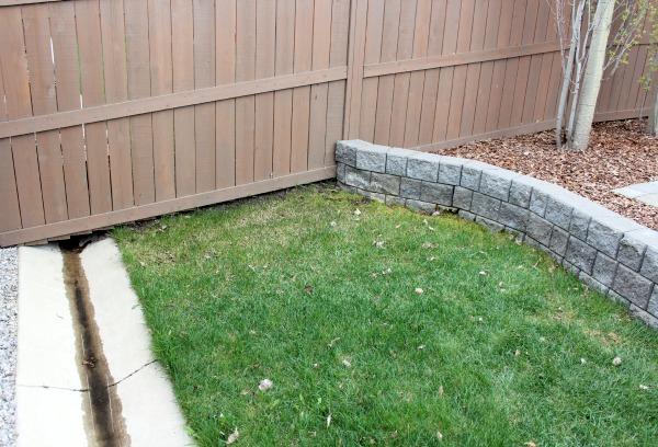 Container Garden Area in Backyard BEFORE - Satori Design for Living