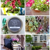 Outdoor Extravaganza Plants & Flowers Projects - Come share your plants & flowers projects!