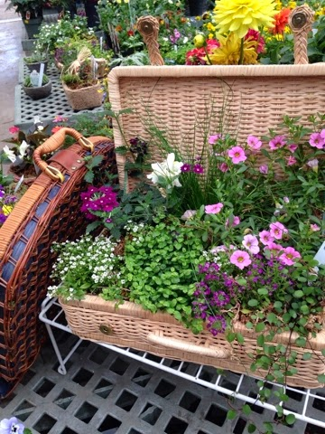 Garden Upcylcing Project - Thrift Shop Picnic Basket Planter
