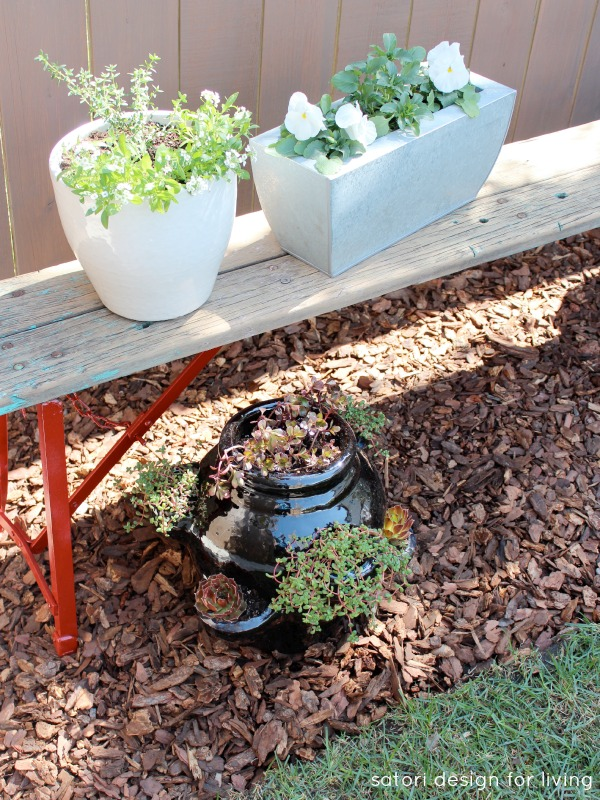 Salvaged Bench with a Vegetable, Herb and Flower Container Garden | Satori Design for Living