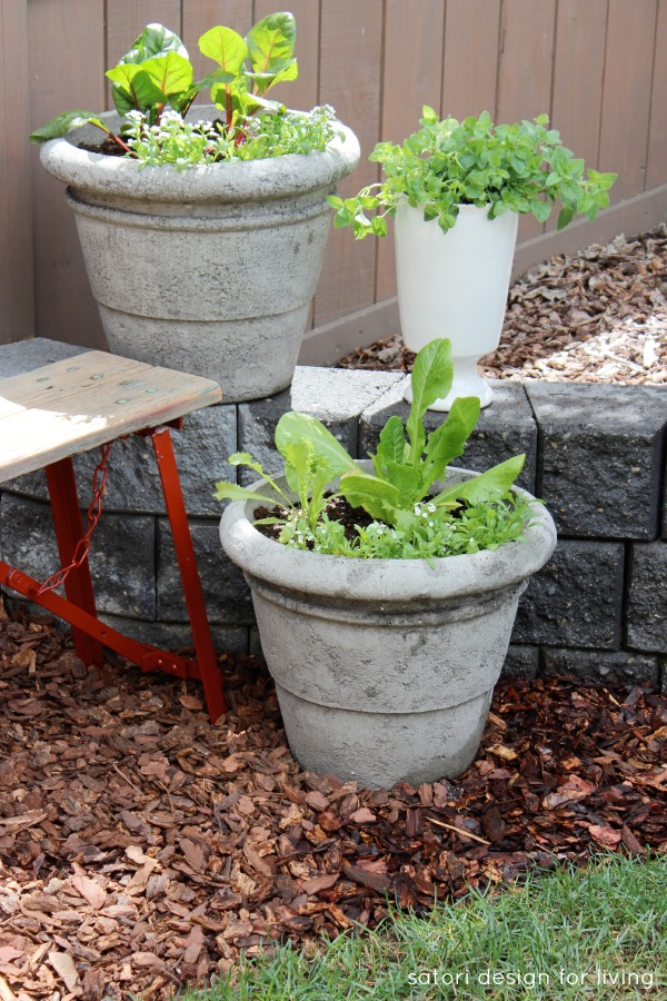 DIY Vegetable, Herb and Flower Container Garden Using an Old Bench and Stone Retaining Wall | Satori Design for Living