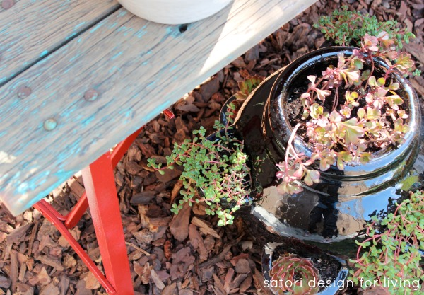 Weathered Red Bench with Succulents in Strawberry Pot