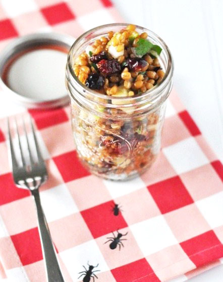 Jar Recipes to Take Along on Your Next Picnic - wheat berry apple salad in a jar by savoring the time
