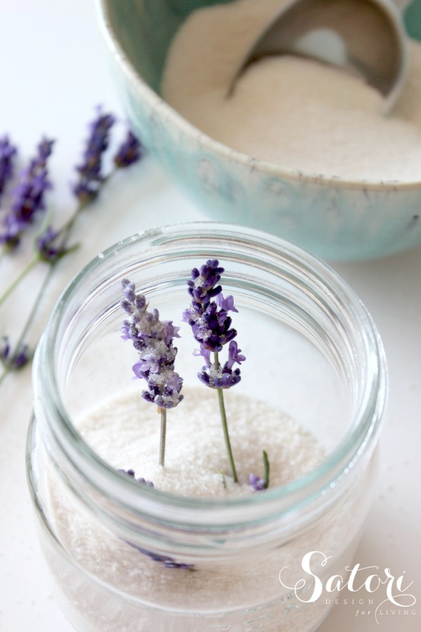 Lavender Infused Sugar in Glass Jar