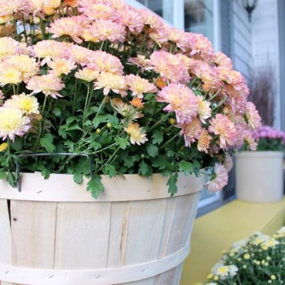 Changing of Seasons: Fall Front Porch