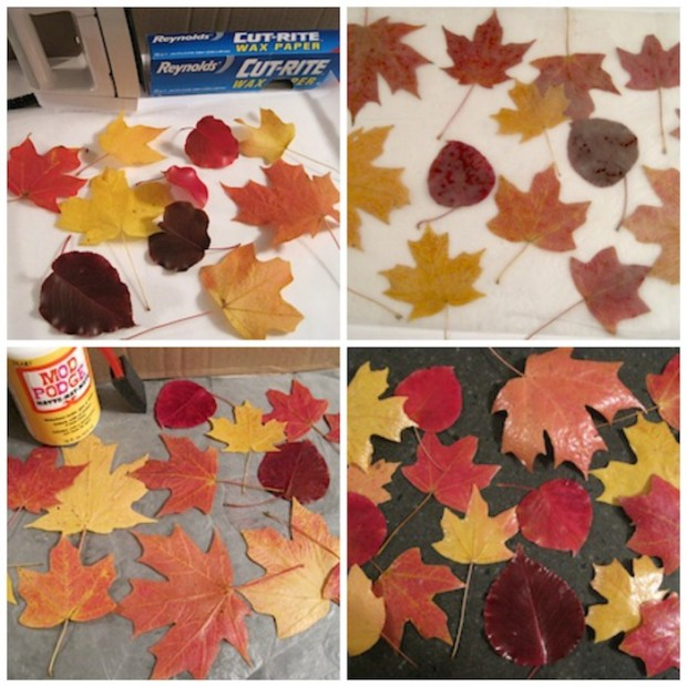 How to Preserve Fall Leaves by The Crafty Journal