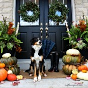 front porch fall 2014 craftberry bush