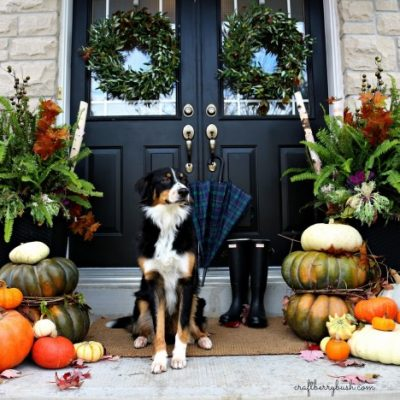 Fall Inspiration - front porch fall 2014 craftberry bush