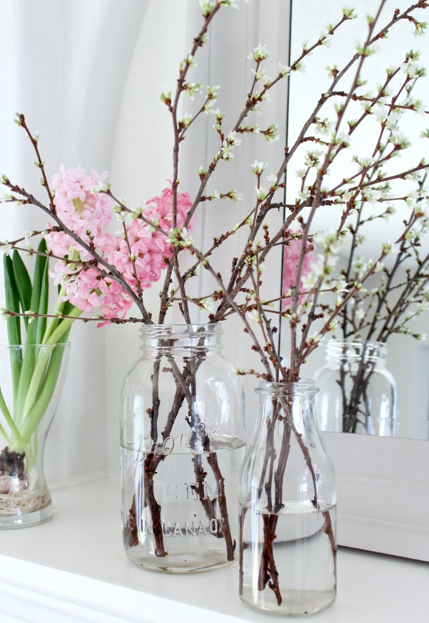 How to Force Branches to Bloom Indoors - Easy Spring Decorating Ideas
