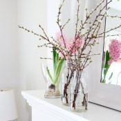 Easy Spring Decorating Project - Forcing Branches to Bloom | Satori Design for Living