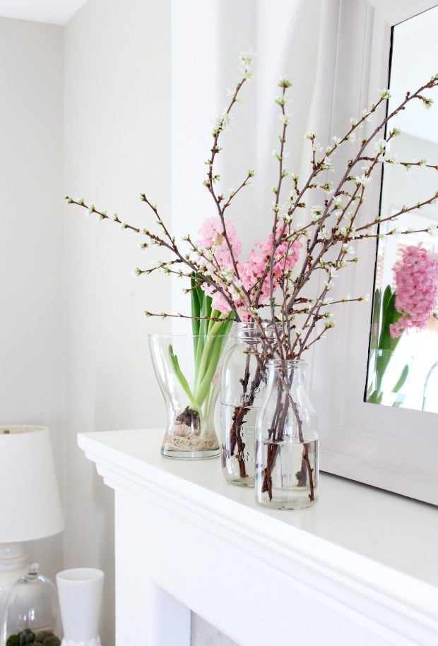 Add an easy and inexpensive touch of spring to your space by forcing branches to bloom indoors. It's easy!