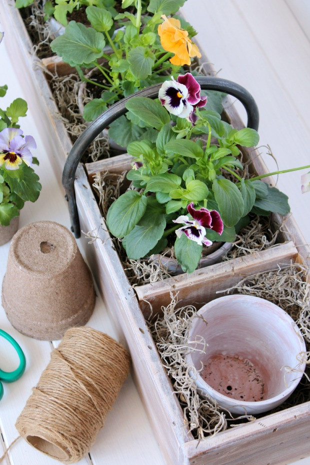 Spring Gardening Project - Vintage Tool Box Flower Planter | Satori Design for Living