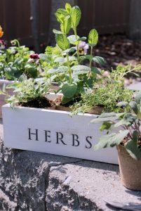 Trash to Treasure Vintage Tool Box Flower & Herb Planters | Satori Design for Living