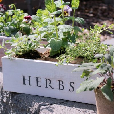 I am loving these trash to treasure vintage tool box planters with flowers and herbs, plus more outdoor gardening projects inspired by the Outdoor Extravaganza!