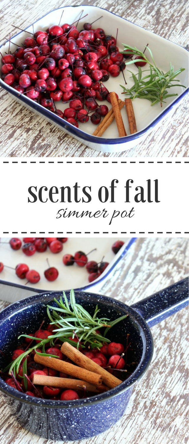 Ditch the synthetic air fresheners and make your home smell divine with this quick and simple DIY fall simmer pot recipe.