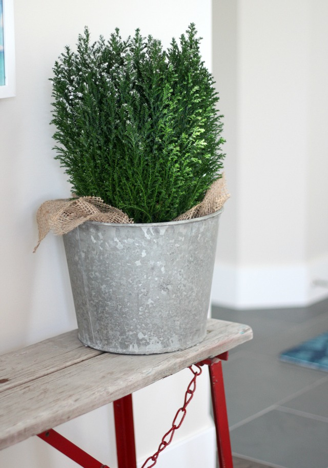 Christmas Home Tour - Mini Christmas Tree in Vintage Sap Bucket - Vintage Red Bench