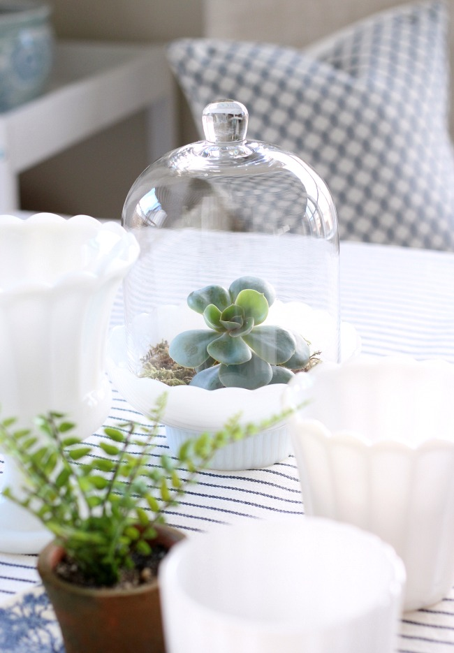 Succulent Cloche Terrarium - Spring Decorating Ideas