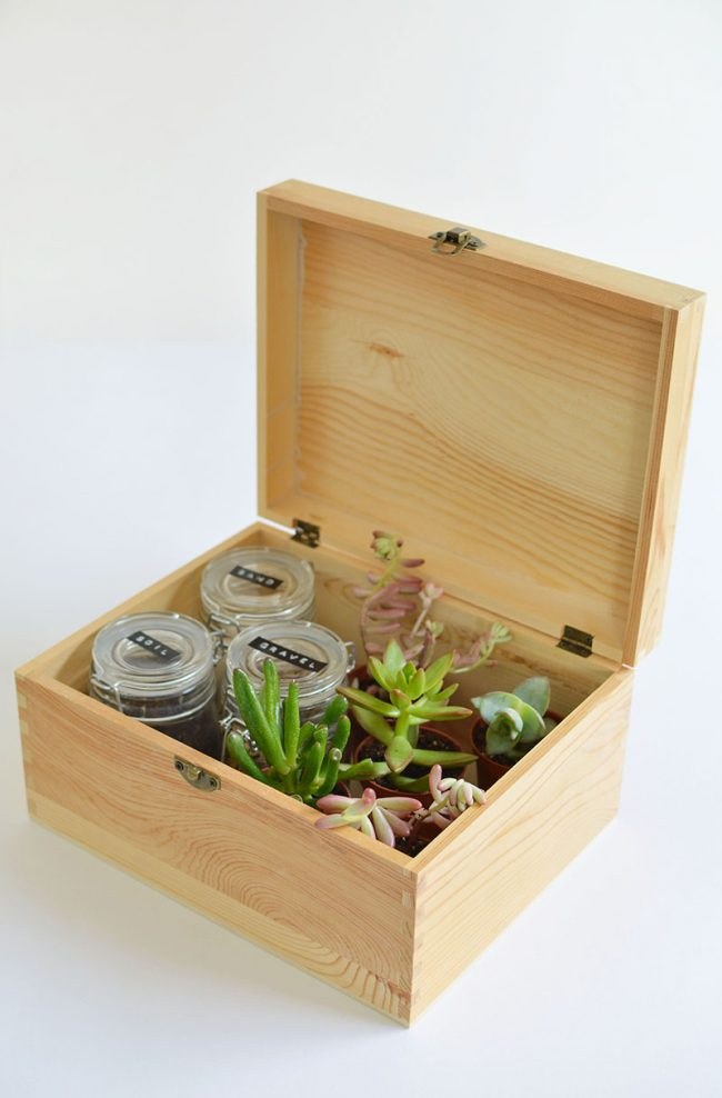 DIY Gift Ideas for the Gardener - Succulent Gift Box by Burkatron