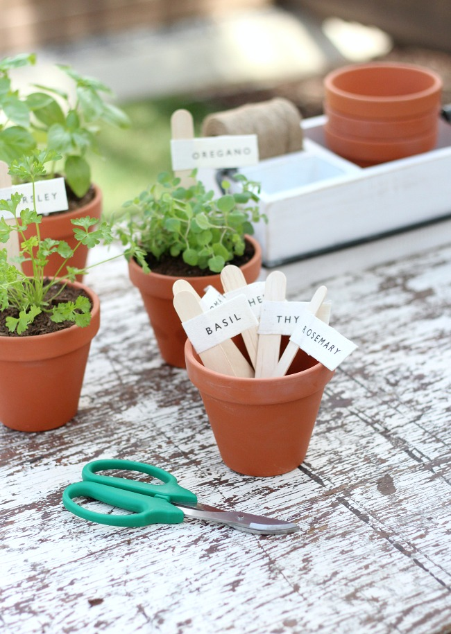 DIY Potted Herb Markers - Step-by-step instructions for making printed canvas herb and vegetable markers.