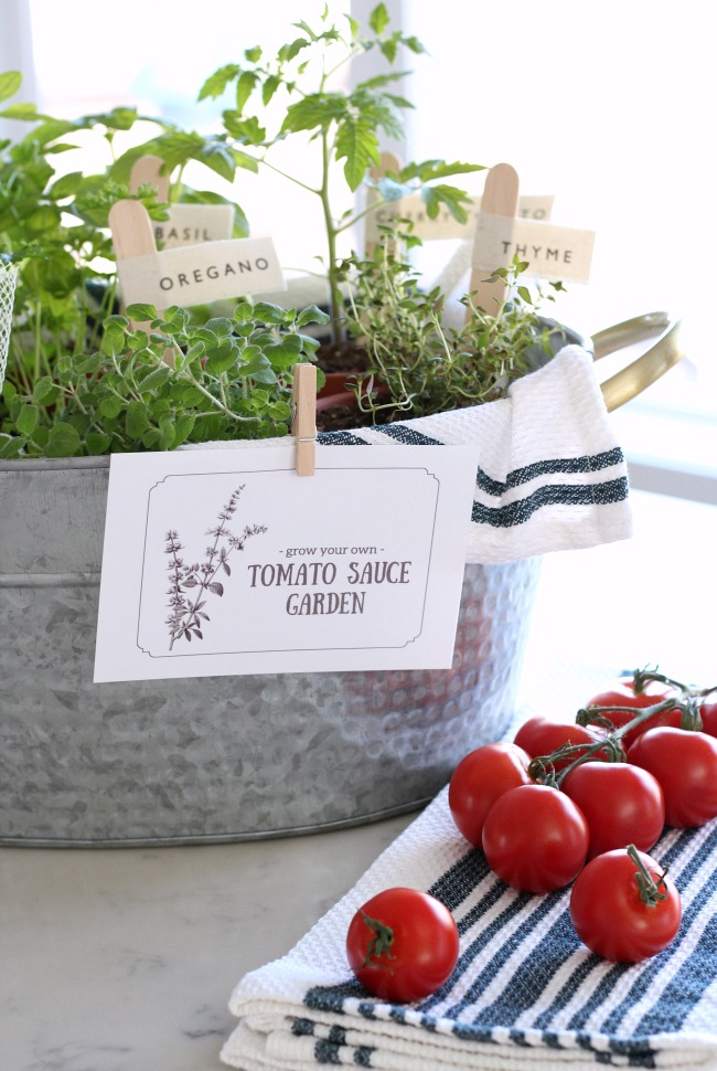 """Grow a Tomato Sauce Garden"" Gift Basket - DIY Gift Idea for the Gardener - Mother's Day, Father's Day, hostess gift, birthday or other special occasion!"