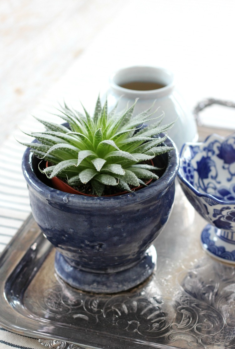 Table Centerpiece with Vintage Silver Tray, Blue and White Pots and Succulent Plant