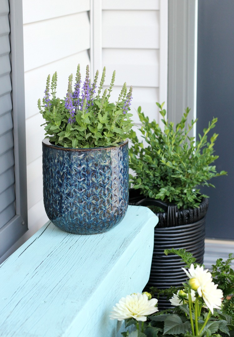 Aqua Outdoor Bench with Potted Plants - Front Porch Decorating Ideas - Satori Design for Living