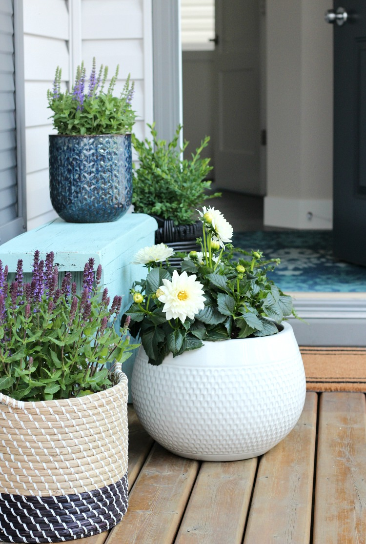 Flea Market Basket Planter - Front Porch with Potted Plants in Ceramic Pots and Baskets - Satori Design for Living