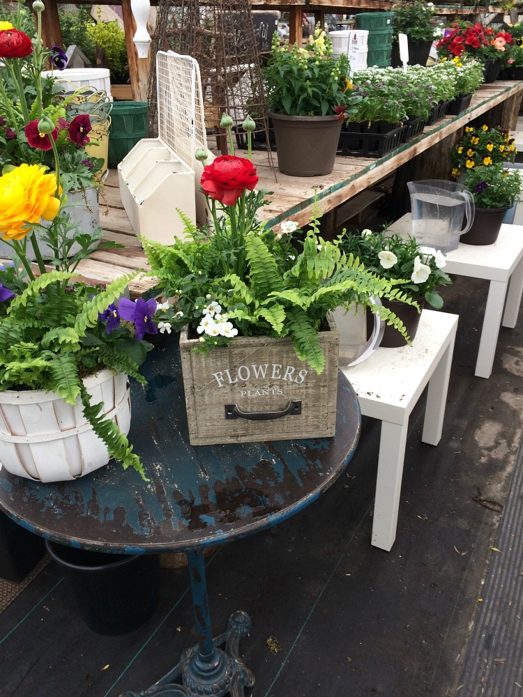 Creative and Unique Outdoor Planter Ideas - Drawer Planter with Mixed Plants and Flowers