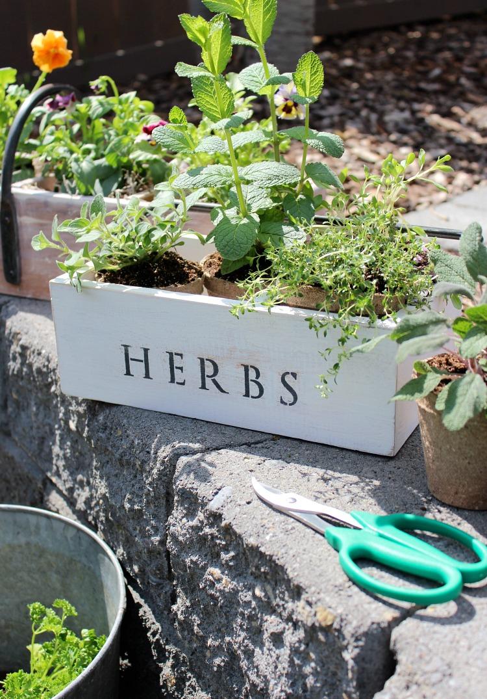 Repurposed Tool Box Planters - Outdoor Planter Ideas - Satori Design for Living