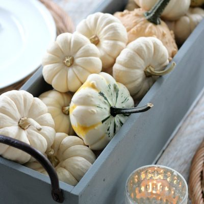 Faux Concrete Table Centerpiece with Baby Boo Pumpkins and Gourds