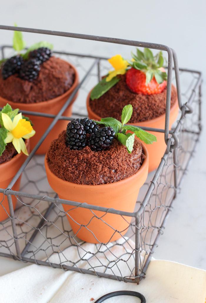 Flower Pot Cakes for Easter or Spring
